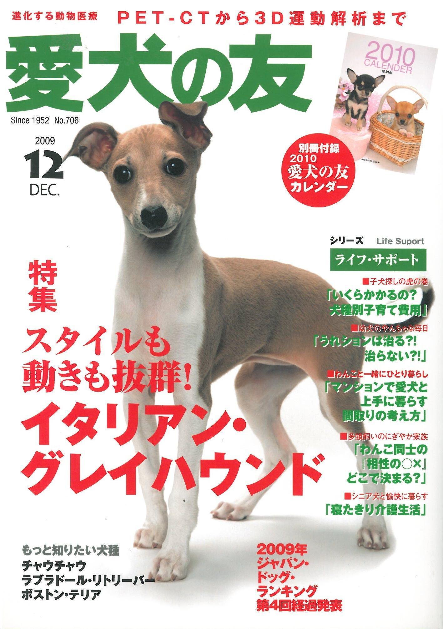 PE・CHA(ペチャ) VOL.7 2010.7